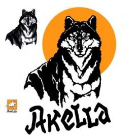 Компания «Акелла» открыла Рим